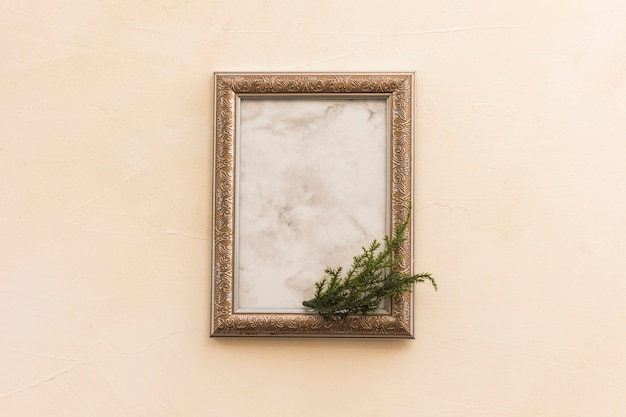 Blank frame with green branch
