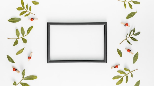 Blank frame with green plant branches