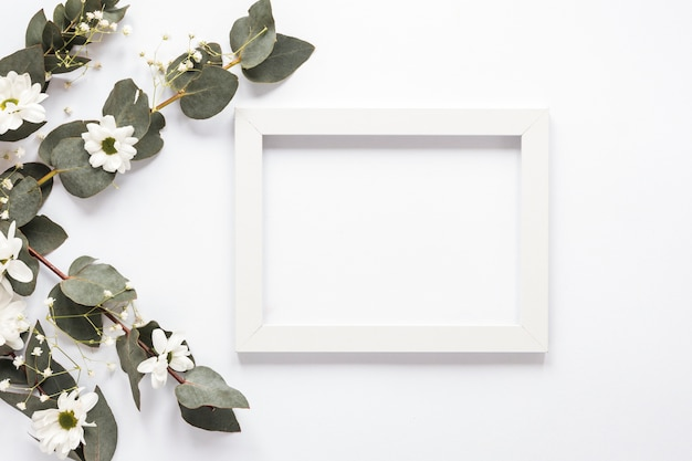 Blank frame with plant branches and flowers