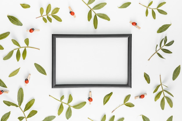 Blank frame with plant branches on table