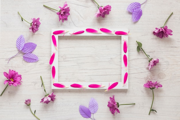 Blank frame with purple flowers on table