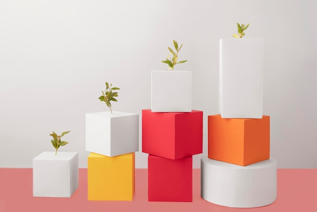持続可能性の概念のために成長する植物を持つ空白の幾何学的な形