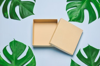 Blank gift box opened on blue wooden background with green leaves