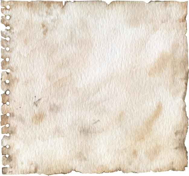 빈 그런 지 천공 된 종이 질감. 구멍이있는 오래된 노트북 페이지. 수채화 그림.
