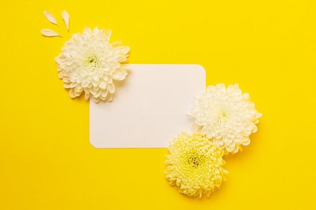 Пустая изолированная белая карточка на смелом желтом фоне с красивыми хризантемами на ней