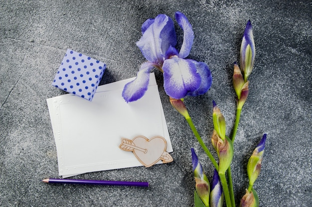 Blank note, violet iris and gift box on gray