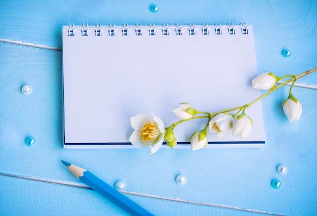 Пустой блокнот, синий карандаш и цветок жасмина