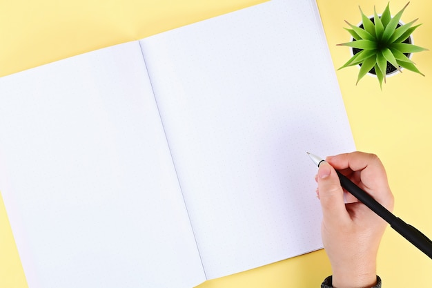 Blank notepad on yellow table, plant, pen. top view, flat lay. mockup, copy space.