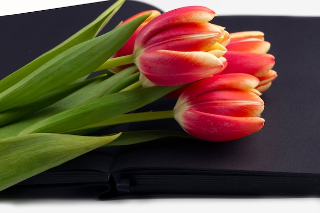 テキストまたはレタリングのためのスペースと春の赤いチューリップで飾られた空白の開いた黒い日記。
