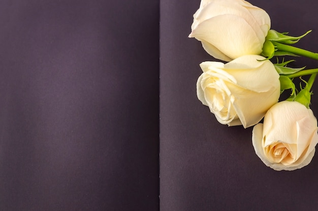 Blank open black diary decorated with white roses with space for text or lettering.