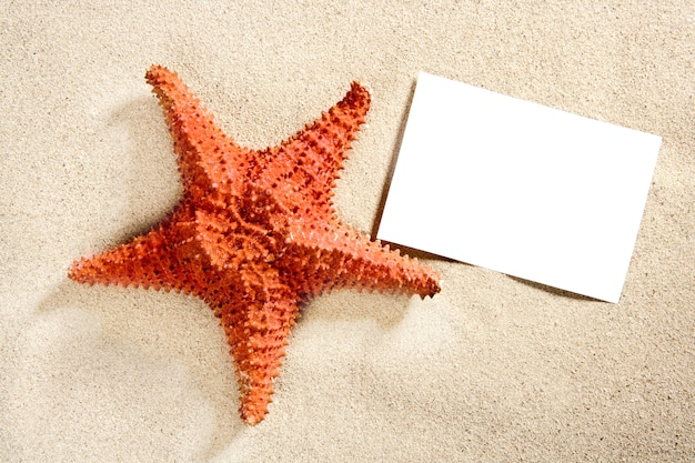 Blank paper beach sand starfish summer vacation