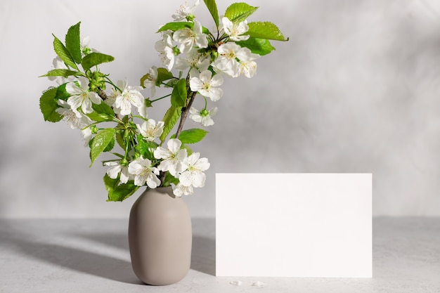 Blank paper and blossoming cherry tree branches in vase in sunlight template for lettering text or design