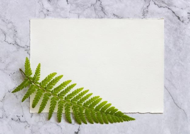 흰색 대리석 테이블 상단 보기에 고사리 잎이 있는 빈 종이 카드. 연하장 평면이 있는 열대 목업 장면