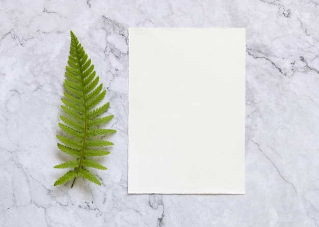 Blank paper card with fern leaf on white marble table top view. tropical mock-up scene with greeting card flat lay