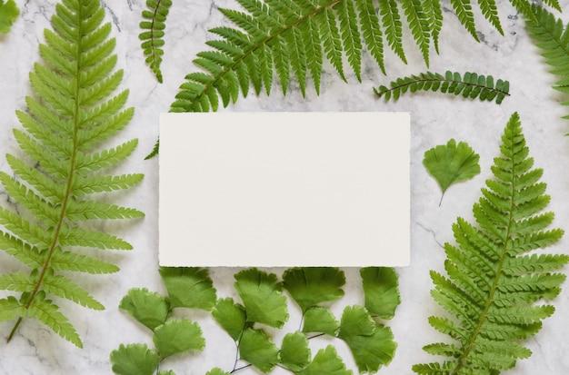 白い大理石のテーブルトップビューに緑のシダの葉と白紙のカード。グリーティングカードフラットレイと熱帯のモックアップシーン