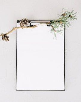 Blank paper decorated with fir branch