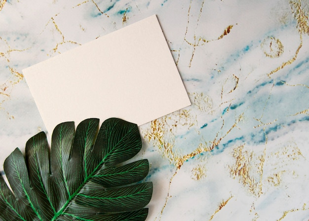Blank paper note and green plant leaf on marble turquoise table