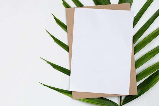 熱帯のヤシの葉の白紙