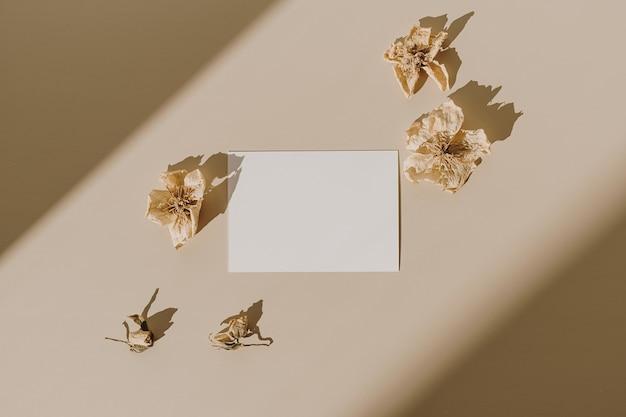 Открытка с пустым листом бумаги с сухими цветочными бутонами с тенью солнечного света на бежевом