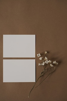 Blank paper sheet cards with beautiful white flowers on neutral brown