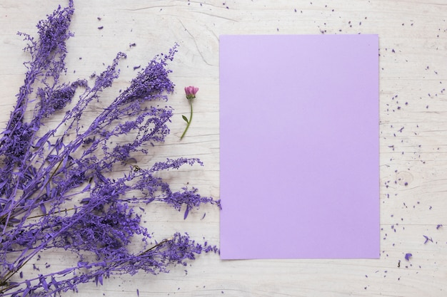 Blank paper sheet with flowers branches on table