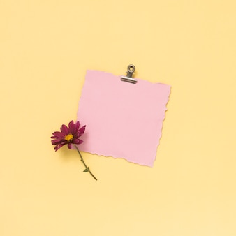 Blank paper sheet with pink flower