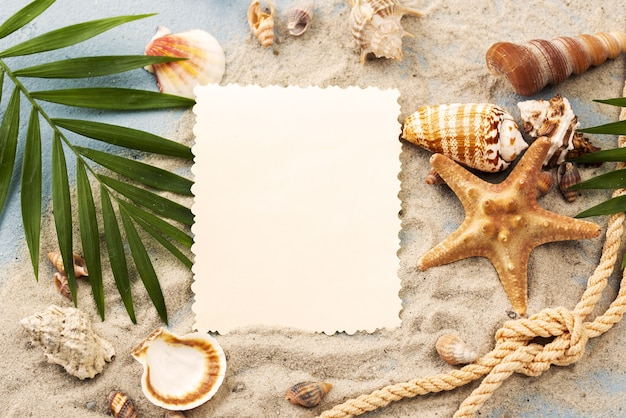 Blank paper sheet with shells and starfish