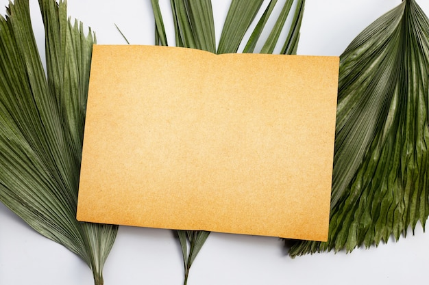 Blank paper on tropical palm dry leaves