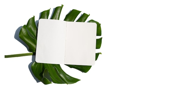Blank paper with leaves on white surface