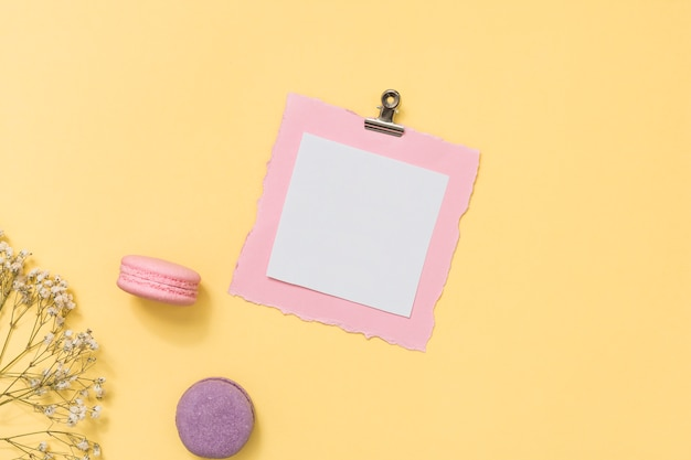 Blank paper with macaroons and flower branch