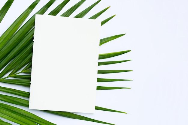 白い背景に熱帯のヤシの葉と白紙。