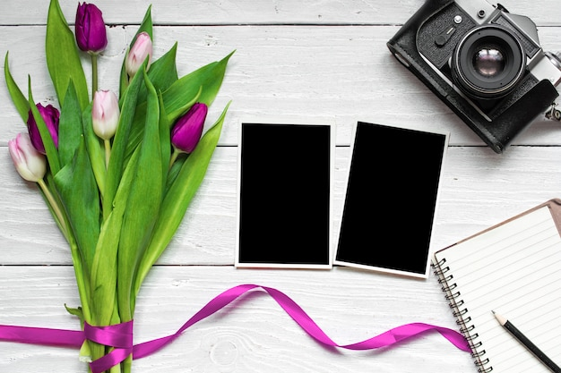 Blank photo frames, vintage retro camera and purple tulip flower