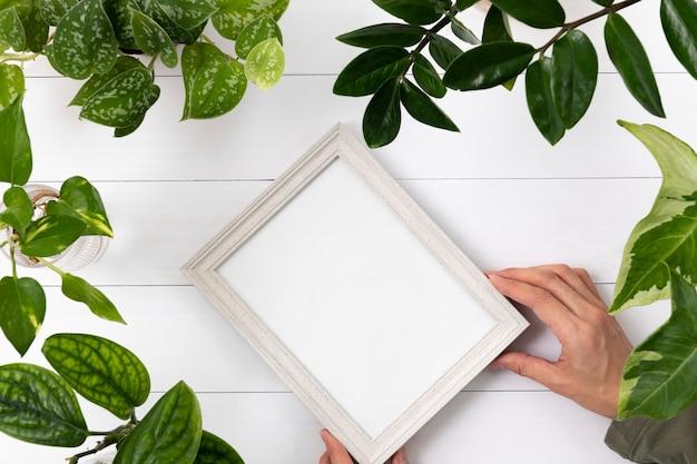 植物の背景に空白の額縁