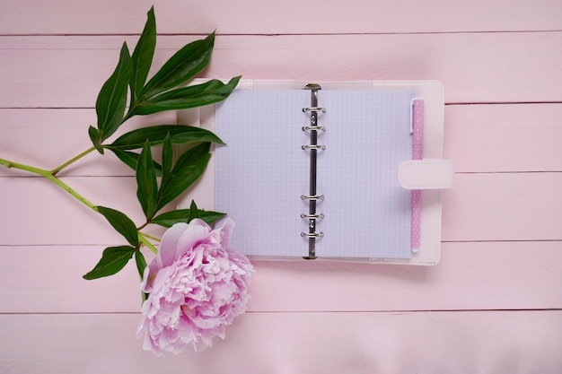 Blank pink notebook and pink peony flower on pink wooden board background