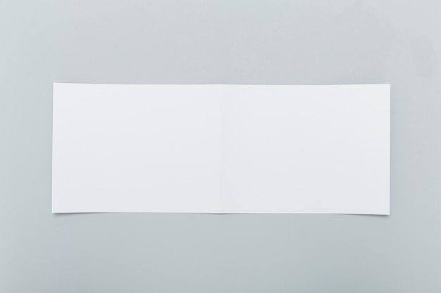 Blank rectangle brochure shape
