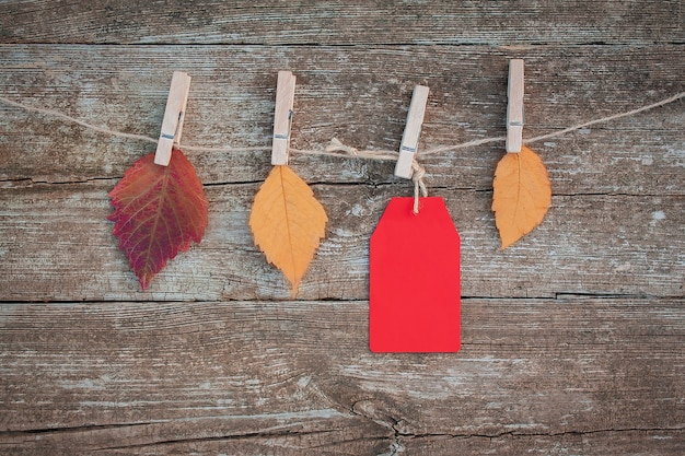 Blank red paper tag and autumn leaves hang on clothespin on rope on rustic