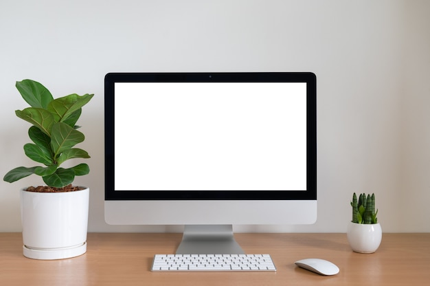 Blank screen of all in one computer with fiddle fig and sansevieria cylindrica plants on table