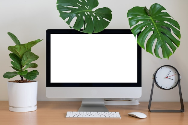 Blank screen of all in one computer with monstera, fiddle fig and clock on table