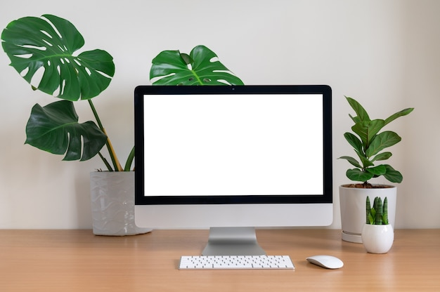Blank screen of all in one computer with monstera, fiddle fig and sansevieria cylindrica plants on table