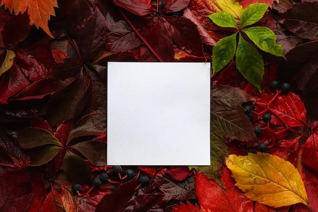 紙の白紙と秋の色とりどりの葉のクローズアップデザインやグリーティングカードのモックアップ