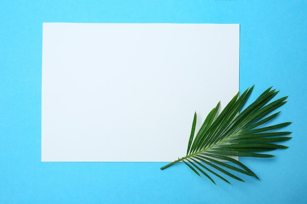 Blank sheet of paper with tropical leaf on color background