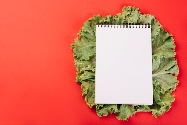 Blank spiral notepad on lettuce over red background