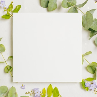 Blank square wedding card over the purple flowers and green leaves on white backdrop