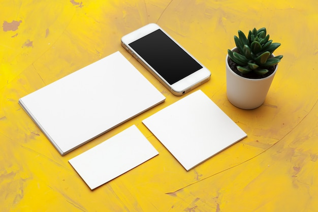 Blank stationery for branding identity. for graphic designers presentations and portfolios
