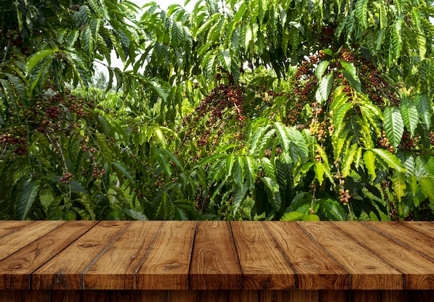 Blank of table at coffee farm