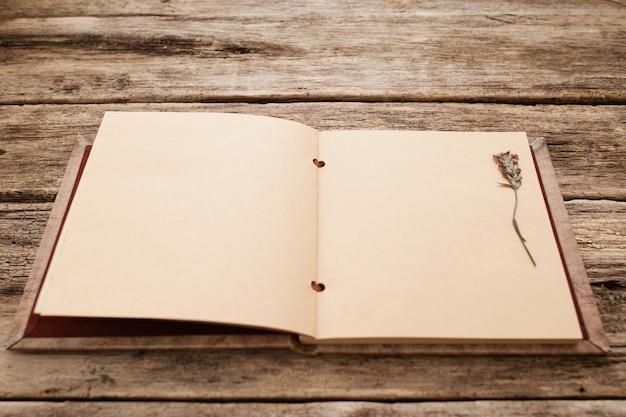 Blank vintage scrapbook with herbarium
