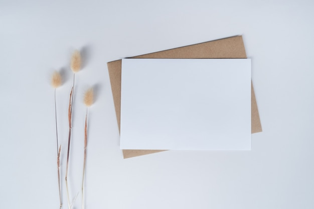 Blank white paper on brown paper envelope with rabbit tail dry flower. top view of craft paper envelope on white background.