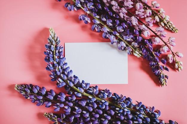 ピンクの背景のフラットレイに満開の青いライラック色の花ルピナスで作られたフレームとテキストの空白の白い紙カードノートモックアップ。テキスト用のスペース