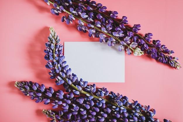 ピンクの背景フラットレイに満開の青いライラック色の花ルピナスで作られたフレームとテキストの空白の白い紙カードノートモックアップ。テキスト用のスペース