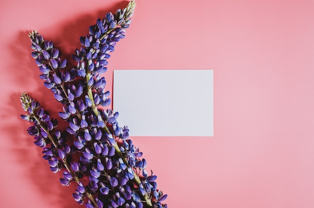 Blank white paper card note with flowers lupine in lilac color in full bloom, flat lay